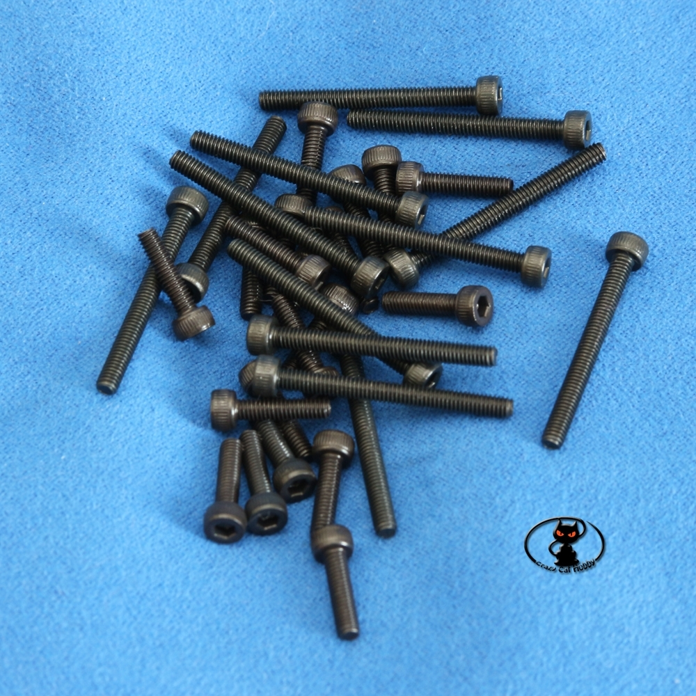 Viti M2 testa cilindrica brunite brugola lunghezza 10 mm confezione 10 pezzi