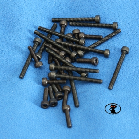Screws M2 cylindrical head brunite allen length 10 mm 10 pieces pack aXes