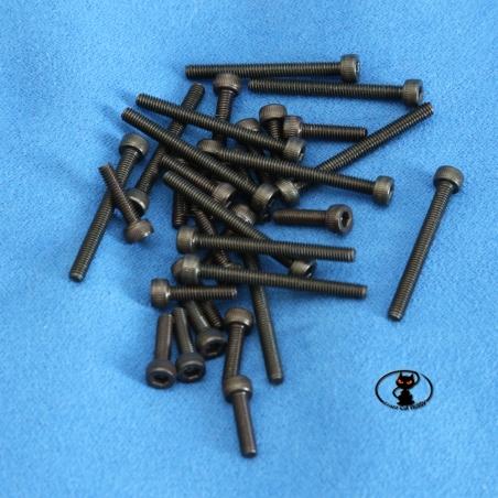 Viti M3 testa cilindrica brunite brugola lunghezza 14 mm