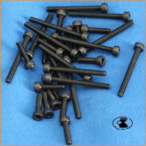Viti M2,5x20 brugola testa cilindrica brunite ( 10 pzi )