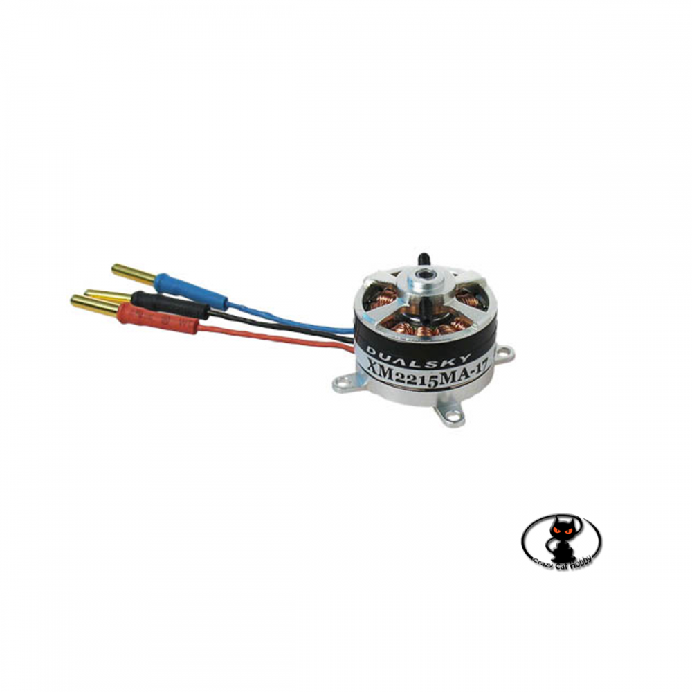 DS55528 micro brushless motor for park / slow flyer aircraft